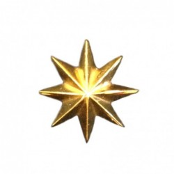 Estrella Ejercito Tierra 8...