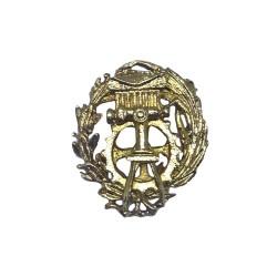Insignia Carrera Delineante...